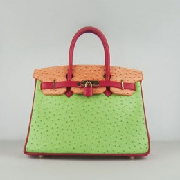 Hermes Birkin 30Cm Ostrich Stripe Handbags Red/Orange/Green Gold