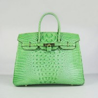 Hermes Birkin 35Cm Crocodile Head Stripe Handbags Green Gold