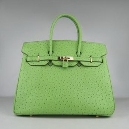 Hermes Birkin 35CM Ostrich Stripe Light Green Gold