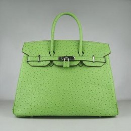 Hermes Birkin 35CM Ostrich Stripe Light Green Silver
