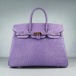 Hermes Birkin 35CM Ostrich Stripe Purple Gold