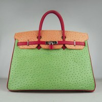 Hermes Birkin 40Cm Ostrich Stripe Handbags Red/Orange/Green Silver