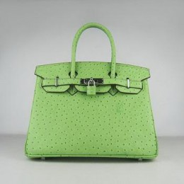 Hermes Birkin 30CM Ostrich Stripe Light Green Silver