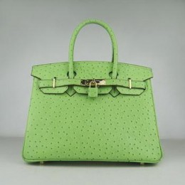 Hermes Birkin 30CM Ostrich Stripe Light Green Gold